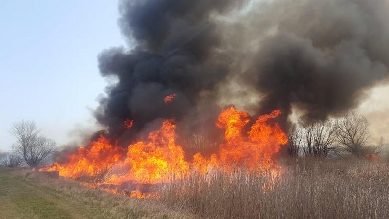 Szabadtéri tüzek megelőzése című videó előképe